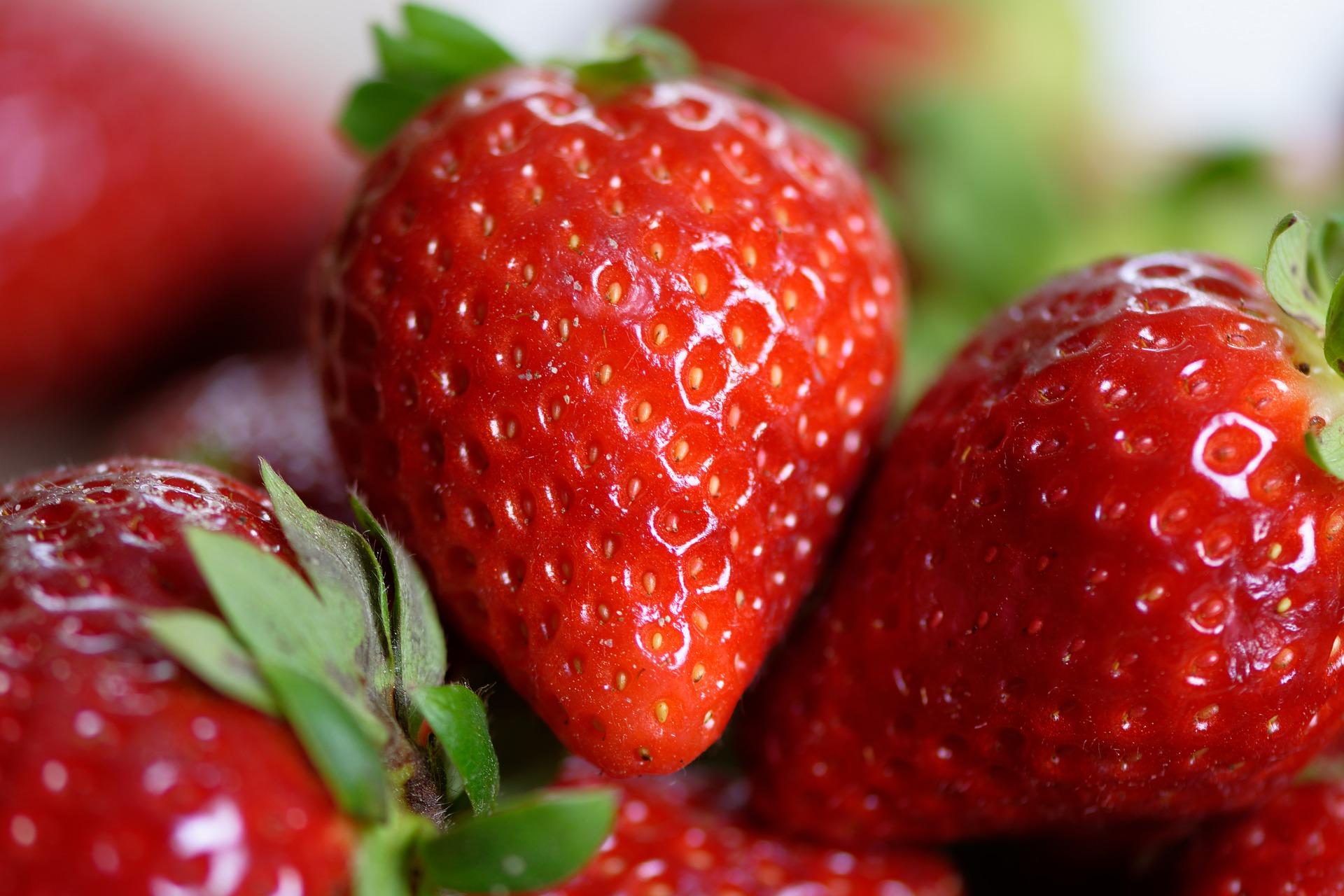 Petite histoire de la fraise