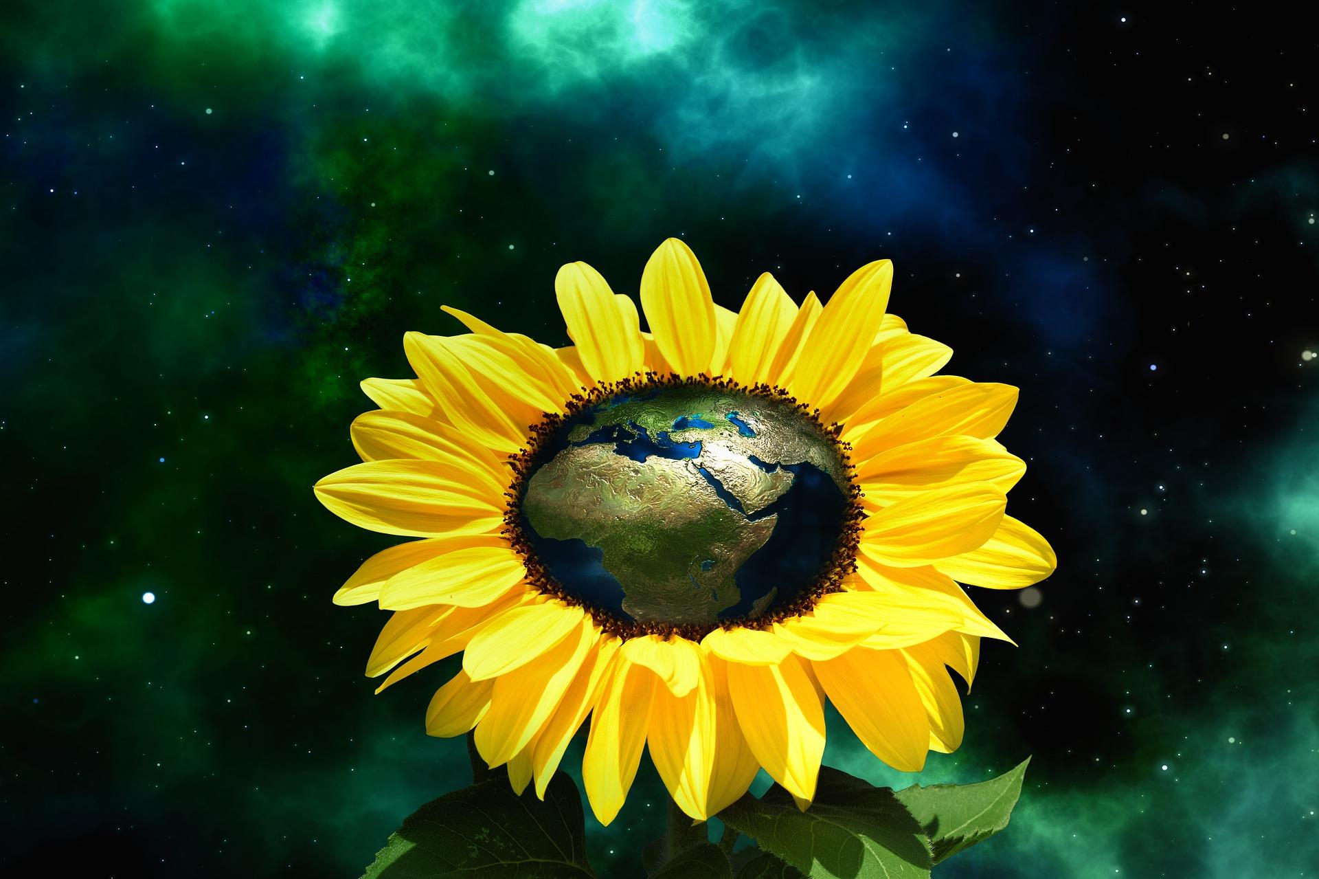 Planète bio et alimentation durable