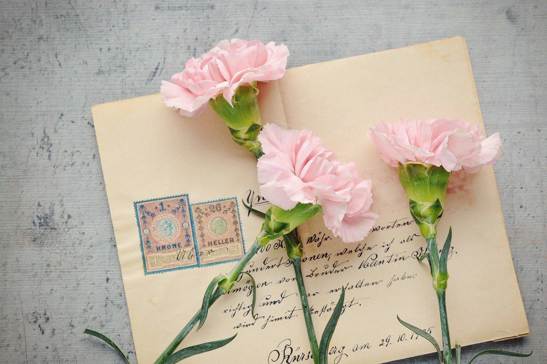 Fabriquer des cartes de vœux à semer